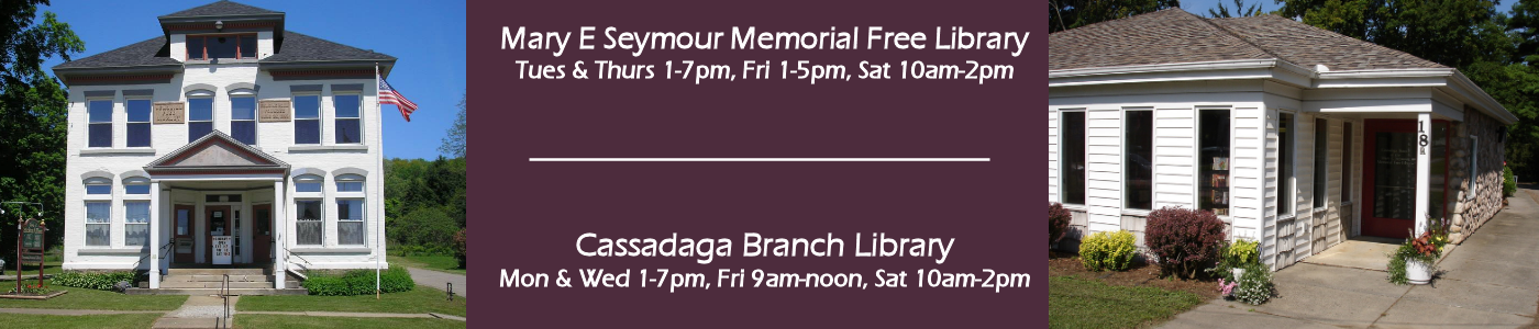 Mary E Seymour Memorial Free Library